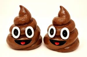 stop dog eating poop naturally