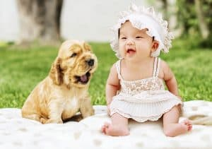 My Dog Becomes Stressed When Our Baby Cries