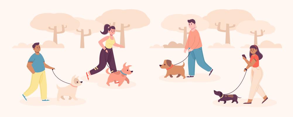 10.Socialising your dog