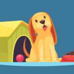 5.How to housetrain your dog