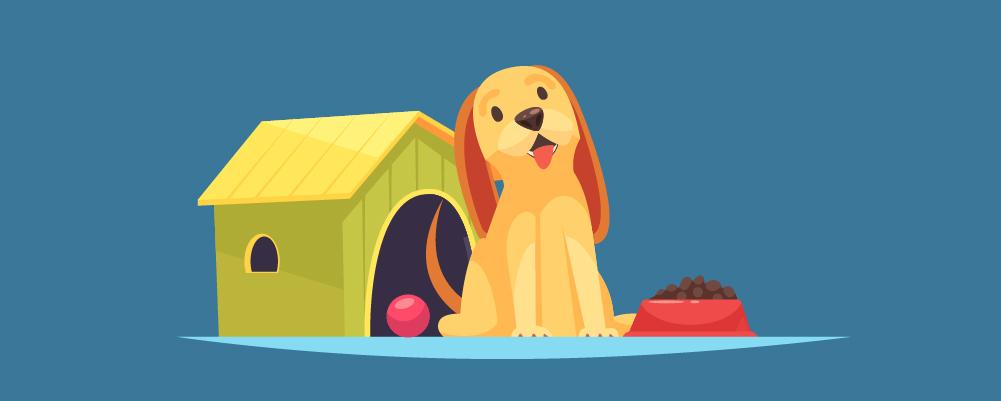 5.Comment former votre chien à la propreté