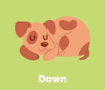 9.Down
