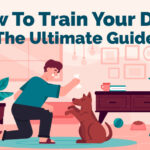 How To Train Your Dog The Ultimate Guide